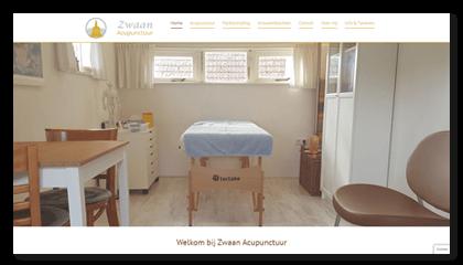 Zwaan Acupunctuur